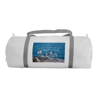 Black-headed gulls, chroicocephalus ridibundus gym bag