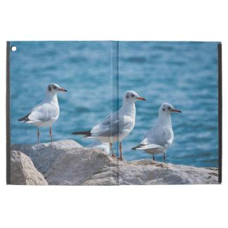 "Black-headed gulls, chroicocephalus ridibundus iPad pro 12.9"" case"