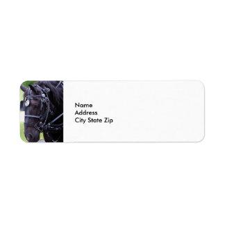 Black Horse 384 Return Address Label