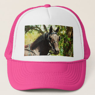 Black horse at National Drive Trucker Hat