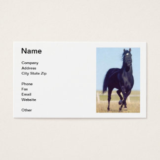 Black Horse Business Card