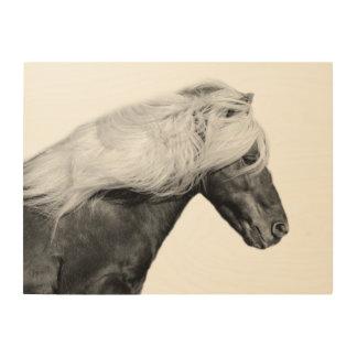 Black horse stallion photography black and white wood wall art