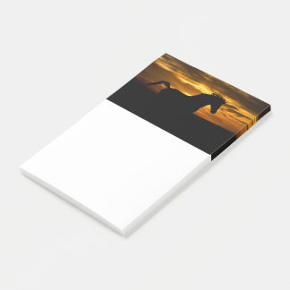 Black Horse Sunset Silhouette Post-it Notes