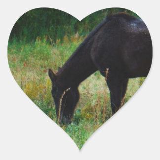 Black horse yellow flowers heart sticker