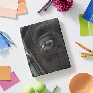 Black Horse's Eye iPad Cover