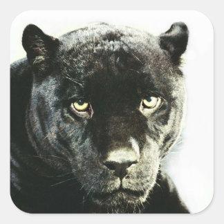 Black Jaguar Panther Square Stickers