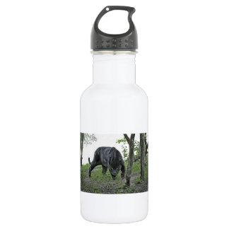 Black Jaguar Stalking 532 Ml Water Bottle