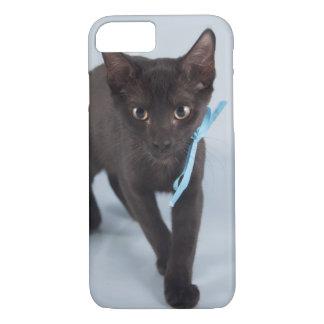 Black Kitten Blue Ribbon iPhone 8/7 Case