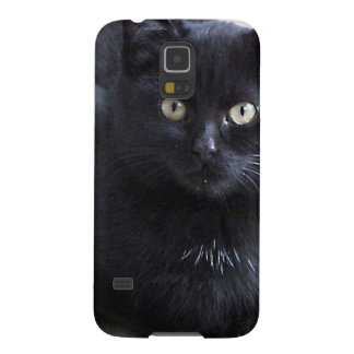 Black Kitten Cat Galaxy S5 Case