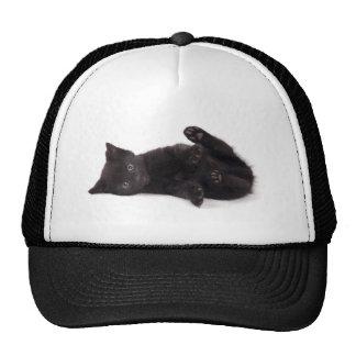 black kitten trucker hat