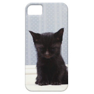 BLACK KITTEN SLEEPING BARELY THERE iPhone 5 CASE