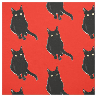 Black Kitty Cat Photography Fabric