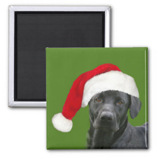 Black lab Christmas Square Magnet