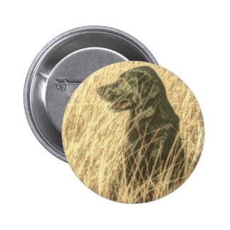 Black lab in wheat field pin