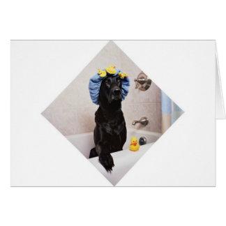 Black Lab Labrador Dog Funny Bath Time Card