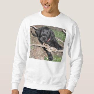 black lab puppy age 6 weeks sweatshirt