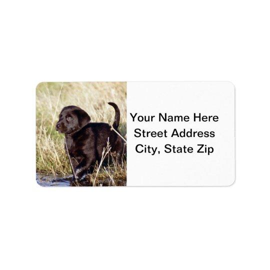 Black Lab Puppy Label