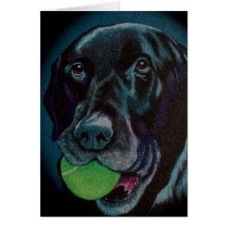 black lab with tennis ball card