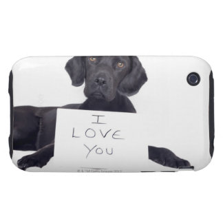 Black Labrador 13 Months iPhone 3 Tough Cover