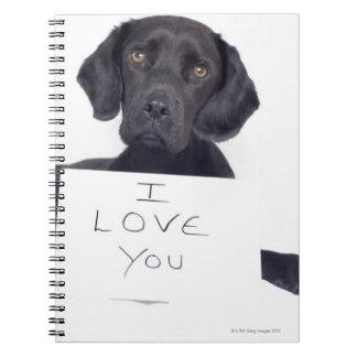 Black Labrador 13 Months Spiral Notebook