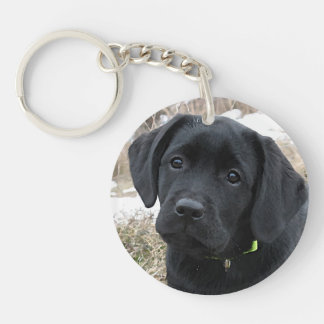 Black Labrador - Awaiting Spring Key Ring