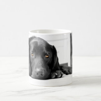 Black Labrador Coffee Mug