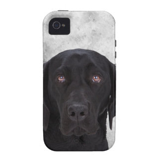 Black Labrador Dog Vibe iPhone 4 Covers