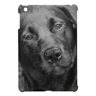 Black labrador dog cover for the iPad mini