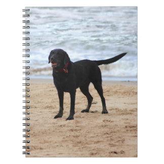 Black Labrador Dog Notebooks