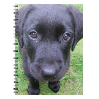 Black Labrador Dog on Grass Spiral Note Book