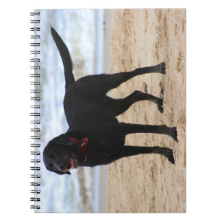 Black Labrador Dog Spiral Note Books