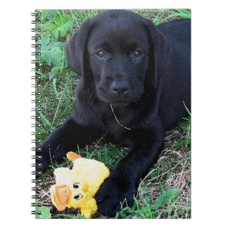 Black Labrador Duck Puppy 1 Spiral Notebooks