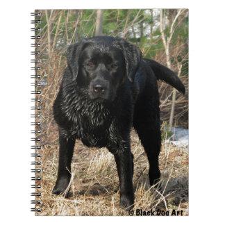 Black Labrador - Early Spring Hunt Spiral Notebooks