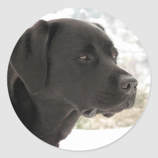 Black Labrador - Gazing Views Classic Round Sticker