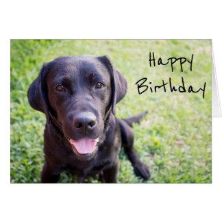 Black Labrador Happy Birthday Card E A Xvuak Byvr Jpg 324x324 Lab Puppy