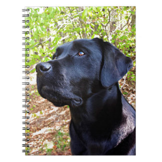 Black Labrador - Keep Looking Up Spiral Note Book