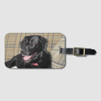 Black Labrador luggage tag with business card slot