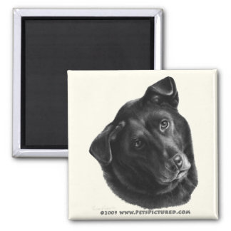Black Labrador Mix Magnet