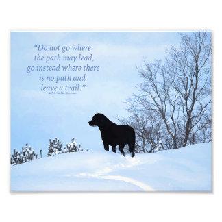 Black Labrador - Path Life Quote 2 Photo Art