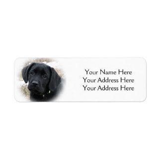 Black Labrador Puppy - Early Spring Hunt Return Address Label