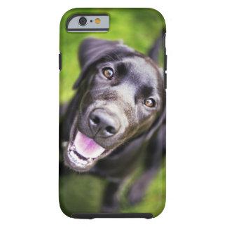 Black labrador puppy looking upwards, close-up tough iPhone 6 case