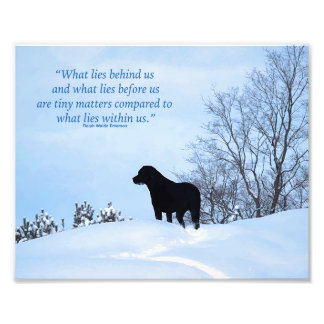 Black Labrador Quote - What lies within Us 2 Photo Print