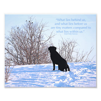 Black Labrador Quote - What lies within Us Photograph