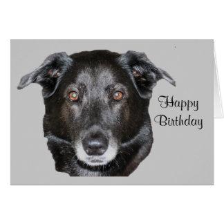 Black Labrador Retriever Dog Birthday Card