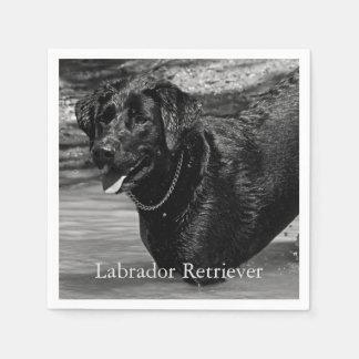 Black Labrador Retriever in Water Disposable Serviette
