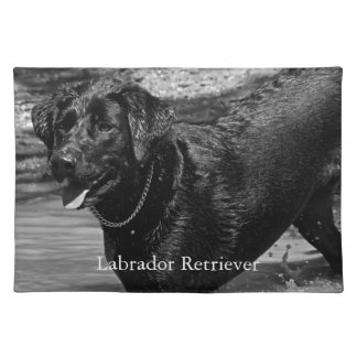 Black Labrador Retriever in Water Placemats