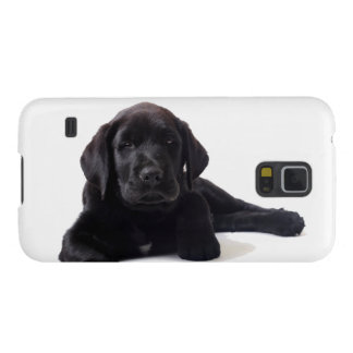 Black Labrador Retriever Puppy Cases For Galaxy S5
