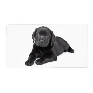 Black Labrador Retriever  Puppy Dog Sticker