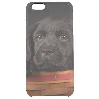 Black labrador retriever puppy in a basket clear iPhone 6 plus case
