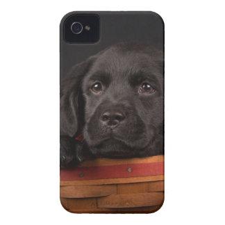 Black labrador retriever puppy in a basket iPhone 4 Case-Mate case